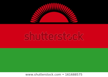 Malawi flag, vector illustration Stock photo © butenkow
