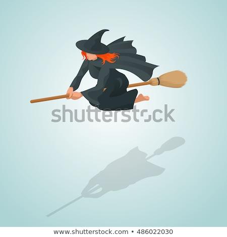 Witch on broom Isometrics. Halloween Vector illustration. Stock photo © popaukropa