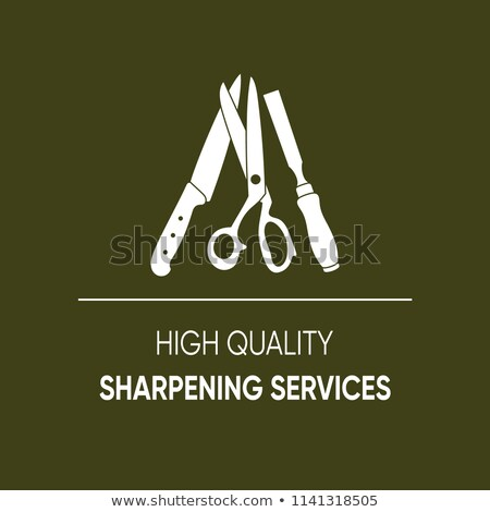 Alto qualidade serviços ícone compras imprimir Foto stock © blumer1979