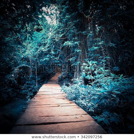 estrada · estrelas · hollywood · filme · fundo - foto stock © tracer