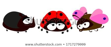 Mérges kicsi bogár rajz illusztráció baba Stock fotó © cthoman