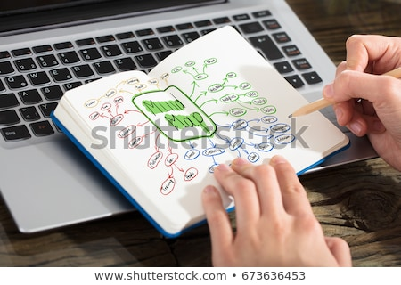 businesswoman drawing mind map chart on notebook stock photo © andreypopov