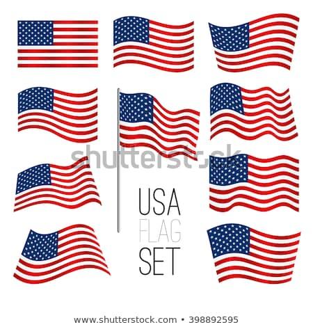 usa flags patriotic symbol vector illustration set stock photo © robuart