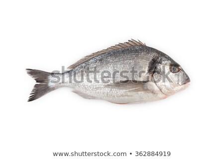vers · vis · koken · boord · lunch · zeevruchten - stockfoto © alex9500