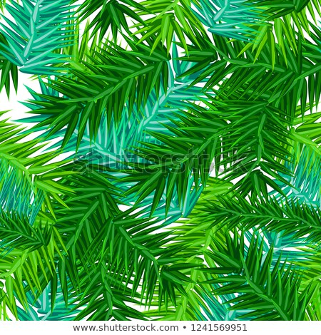 green succulent fir branches seamless pattern on white stock photo © orensila