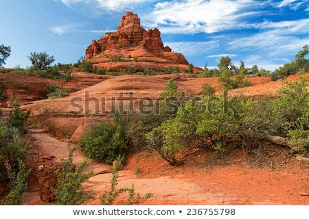 Bell Rock, Sedona Stock photo © fotogal