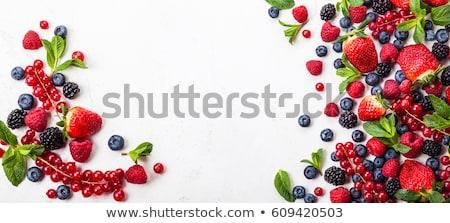 Közelkép piros bogyók organikus eper zöld levelek Stock fotó © artjazz