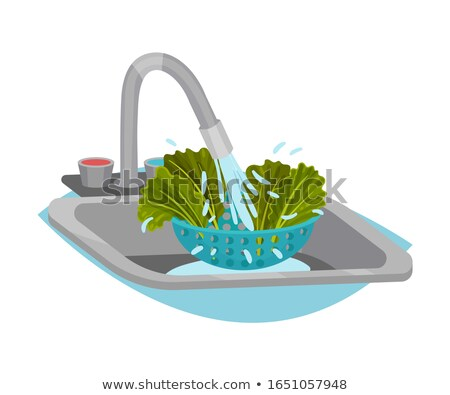 green cleaning concept vector illustration stock photo © rastudio