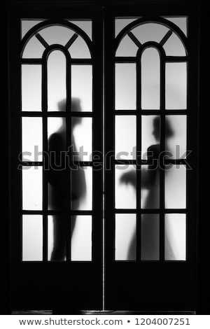 beautiful silhouette of lovers through the glass stock photo © ruslanshramko