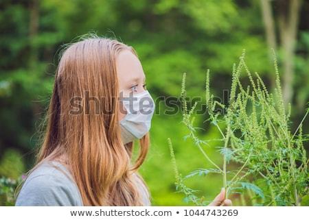 Fiatal nő orvosi maszk allergia nő tavasz Stock fotó © galitskaya