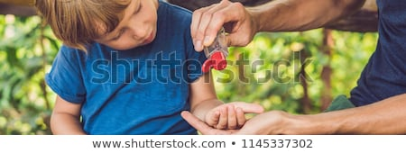 Father and son using wash hand sanitizer gel in the park before a snack Stock photo © galitskaya