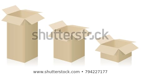 Cardboard Boxes Big and Small Size Isolated Vector Stock photo © robuart