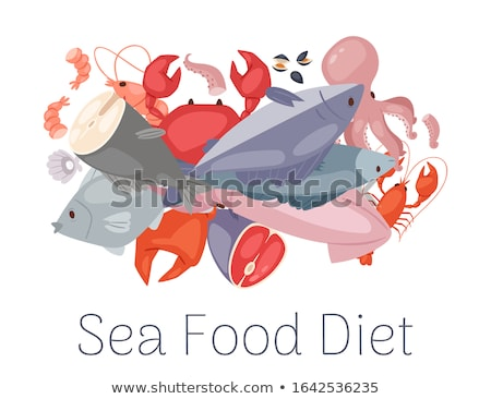 Lobster and Clam Posters Set Vector Illustration Stock photo © robuart