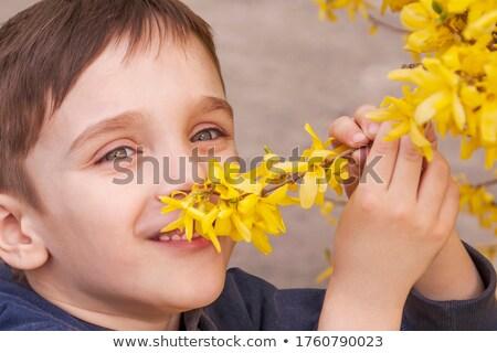 Kicsi fiú élvezi virágok aroma élvezet Stock fotó © Anna_Om