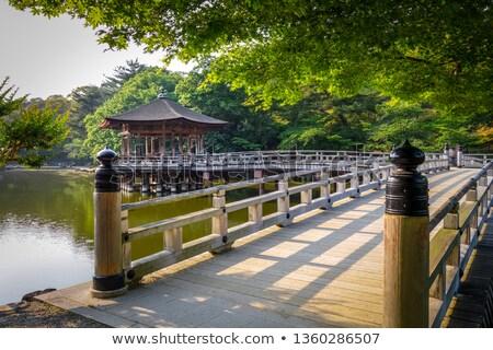 Wody parku Japonia jezioro domu budynku Zdjęcia stock © daboost