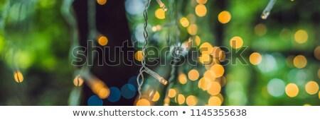 Luzes grinalda colorido lâmpadas bokeh bandeira Foto stock © galitskaya