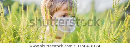 Boy in a medical mask because of an allergy to ragweed BANNER, long format Stock photo © galitskaya