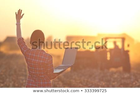 Gazdálkodás emberek traktor sofőr nő aratás Stock fotó © robuart
