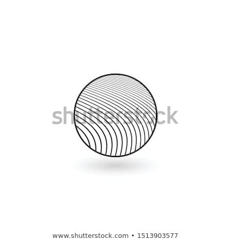 kwiat · projektowanie · logo · szablon · projektu · liści · korporacyjnych - zdjęcia stock © kyryloff
