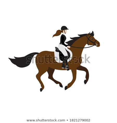 Riding Hobby, Rider Girl, Horse with Saddle Vector Stock photo © robuart