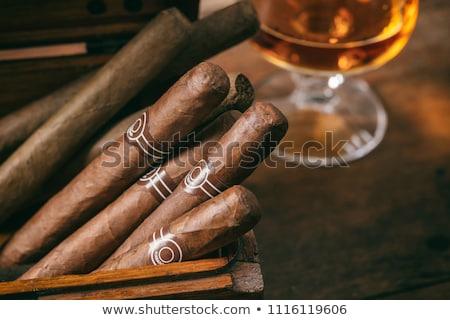 Whiskey brandewijn glas cubaans sigaar grijs Stockfoto © dash