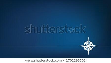 Mavi pusula gül klasik stok vektör Stok fotoğraf © kyryloff