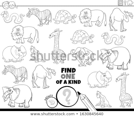 one of a kind game with animals coloring book page Stock photo © izakowski