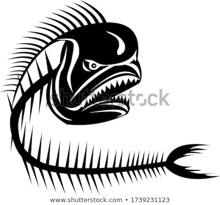 Mahi-Mahi Dorado Dolphinfish Angry Skeleton Retro Black and White Stock photo © patrimonio