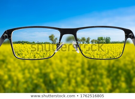 Eyeglasses for Better Viewing Stock photo © AlphaBaby