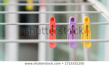 カラフル セット 洗濯 服 孤立した 白 ストックフォト © xaniapops
