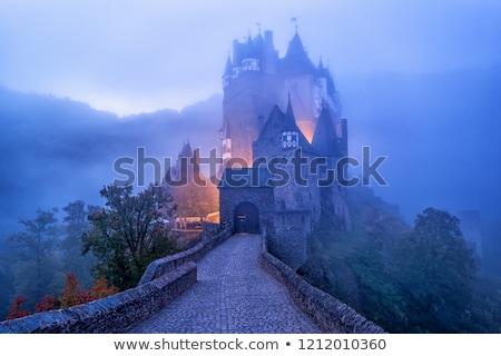 Historic castle Stock photo © xedos45