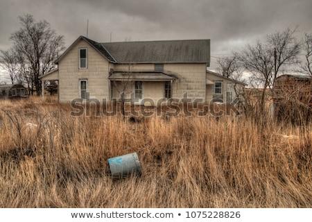 old abandoned farmhouse ruin Stock photo © morrbyte