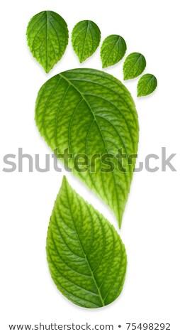 緑 足 印刷 緑の草 移動 カーボン ストックフォト © chlhii1