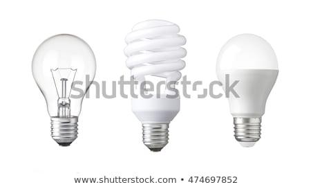 Set energy saving light bulb lamp electricity Stock photo © Hermione