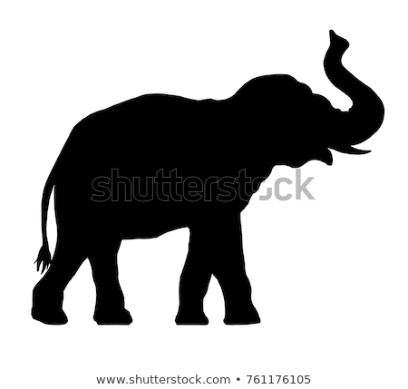Olifanten silhouetten ingesteld lopen schilderij afrika Stockfoto © Kaludov