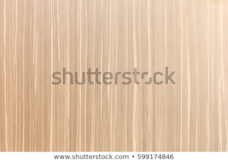 Close-up of obsolete plywood texture Stock photo © Arsgera