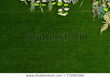 Artificielle gazon full frame vue terrain de football sport Photo stock © saje