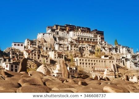 Maitreya Temple In Leh Ladakh India Foto d'archivio © szefei