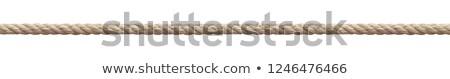 старые веревку узел безопасности инструментом безопасности Сток-фото © pterwort