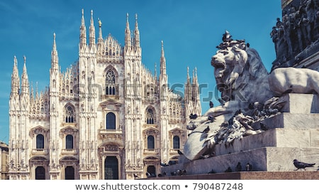 details of the duomo di milano in milan italy stock photo © tanart