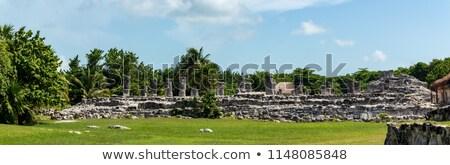 Iguana on Mayan Ruins Stock photo © ozgur