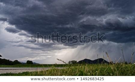 Slechte weer landschap veld bloemen wolken voorjaar Stockfoto © chesterf