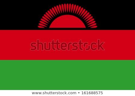 флаг Малави ветер Сток-фото © creisinger