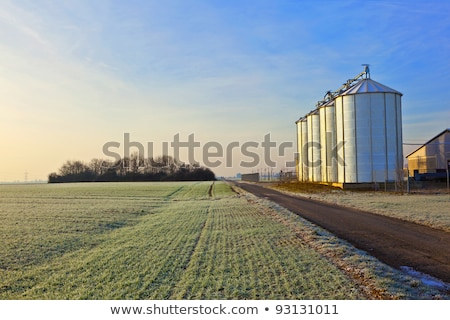 beautiful landscape with silo and  blue sky Stock photo © meinzahn