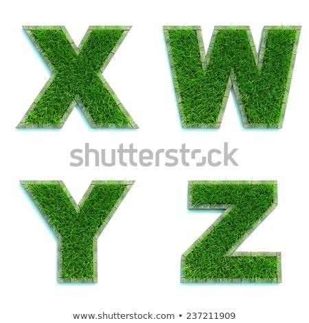 Letters Y, Z of 3d Green Grass - Set. Stock photo © tashatuvango
