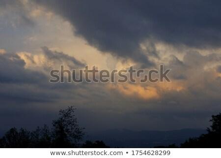 Onweersbui bergen hemel boom gras bos Stockfoto © entazist