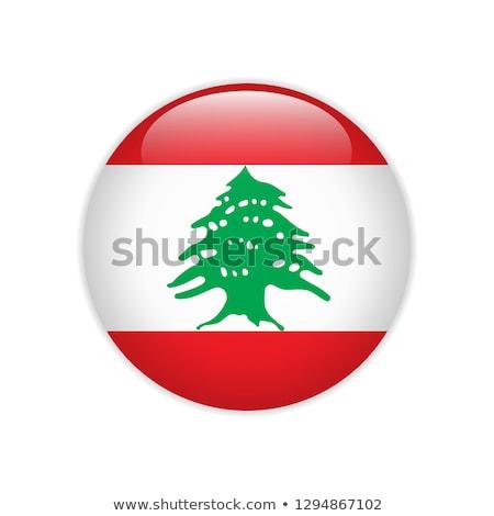 Botão símbolo Líbano bandeira mapa branco Foto stock © mayboro1964