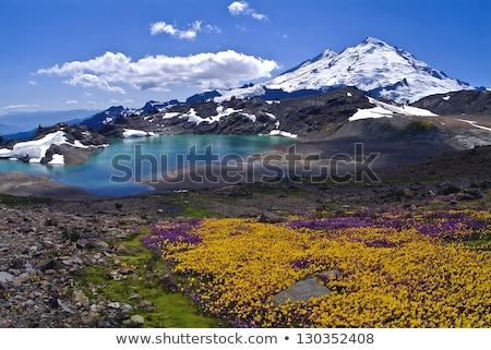 Бейкер Вашингтон долины британский пейзаж снега Сток-фото © hpbfotos