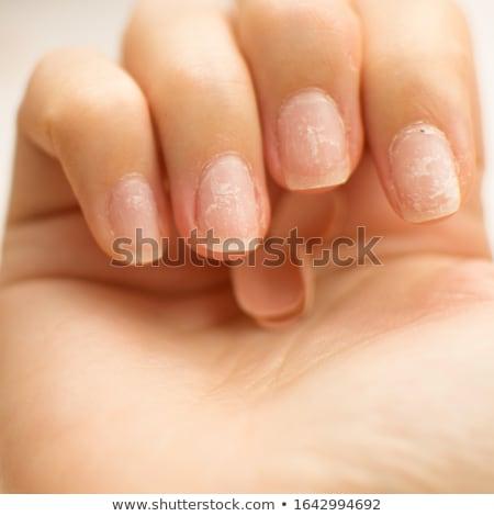 gyönyörű · körmök · művészet · női · kezek · manikűr - stock fotó © pressmaster