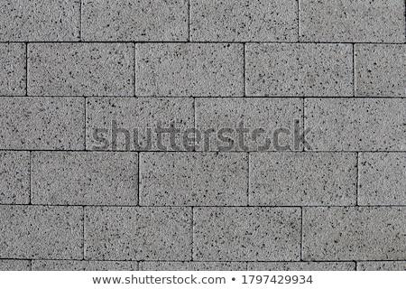 Smooth Gray Paving Slabs as of Rectangles and Squares. Stock photo © tashatuvango